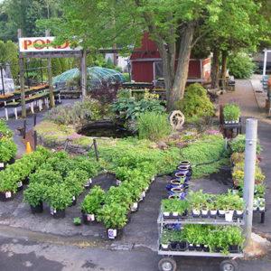Garden Center Our Store 14