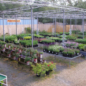 Organic Garden Fertilizer Center Store
