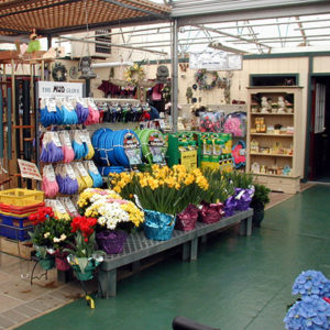 Garden Center Store