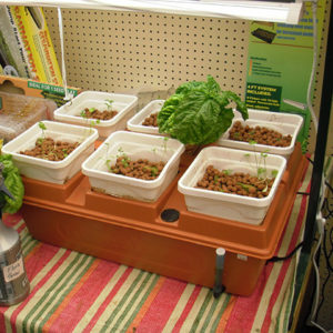 Hydroponic Nutrients Products