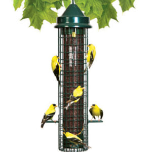 Squirrel Buster Finch Wild Bird Feeder