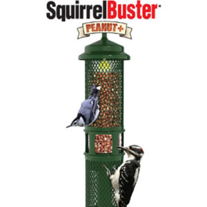 Squirrel Buster Peanut+ Wild Bird Feeder