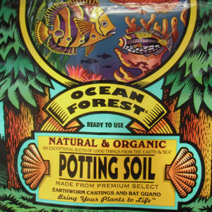 ocean forest potting soil